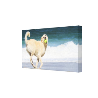 Labradoodle - Happy Day on the Beach Canvas Print