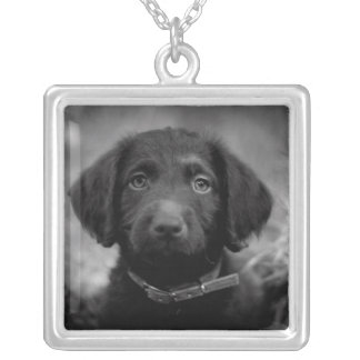 Labradoodle in B&W Necklace