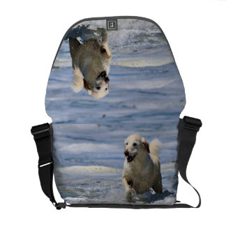 Labradoodle - Izzy Courier Bag