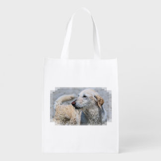 Labradoodle - Izzy Grocery Bag