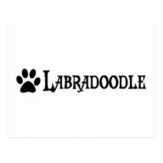 Labradoodle pirate style w pawprint post card