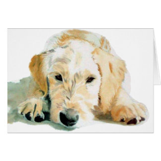 Labradoodle Pup Greeting Cards
