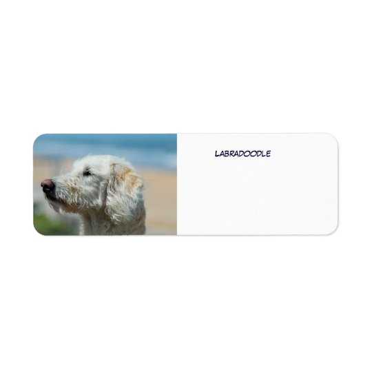 Labradoodle Return Address Label