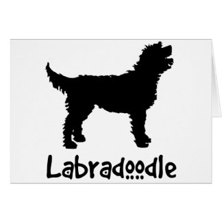 Labradoodle w Cool Text Greeting Cards