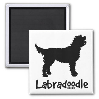 Labradoodle w/ Cool Text (in black) Square Magnet