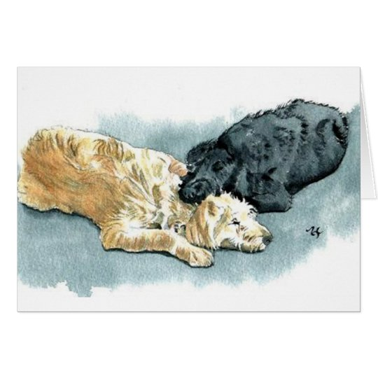 Labradoodles in Love Greeting Card