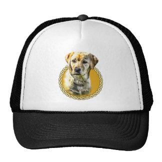 Labrador 001 trucker hats