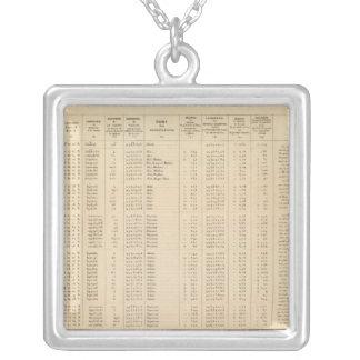 Labrador 29 silver plated necklace