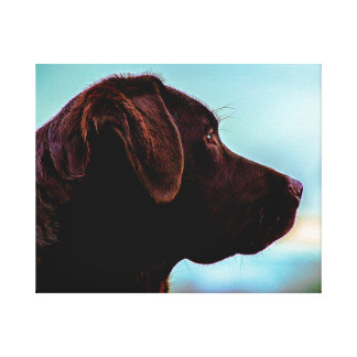 Labrador at Dusk Canvas Print