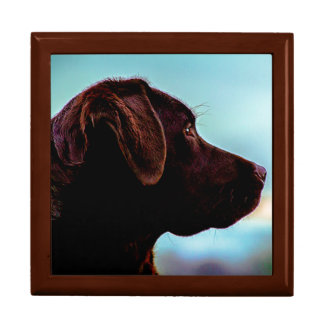 Labrador at Dusk Gift Box