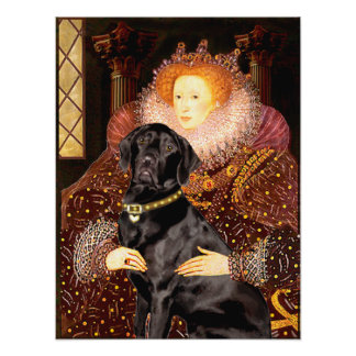Labrador (black) - Queen Poster
