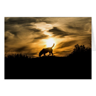 Labrador Dog at Sunset Greetings Card