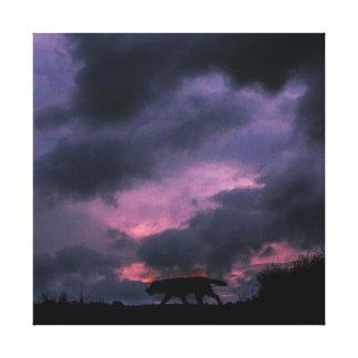 Labrador Dog in Sunset Canvas Print