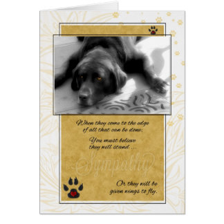 Labrador Dog Pet Sympathy Card