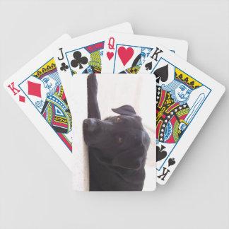 Labrador Dog Bicycle Poker Deck