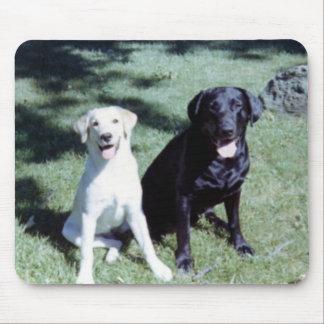 Labrador Dogs Mouse Mat