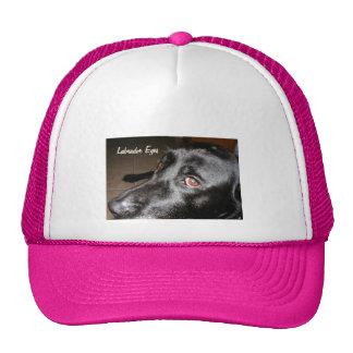 Labrador Eyes Hats
