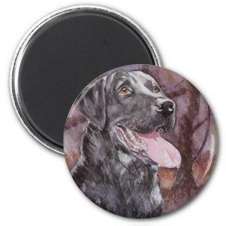 Labrador. Gun Dog Magnet