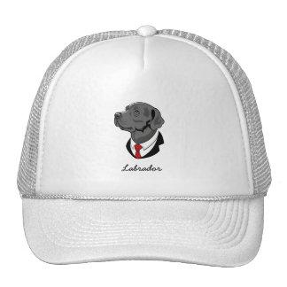 Labrador Hat