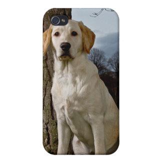 Labrador iPhone 4/4S Case
