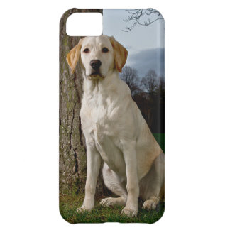 Labrador iPhone 5 Case Mate Barely There