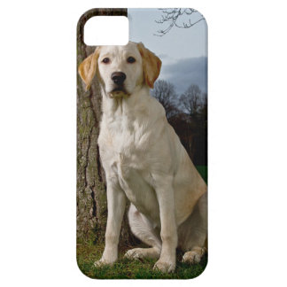 Labrador iPhone 5 ID Case iPhone 5 Covers