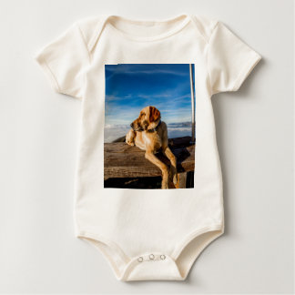 Labrador on beach baby bodysuit