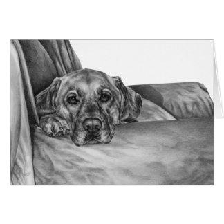 Labrador on Chair Drawing by Kelli Swan Card