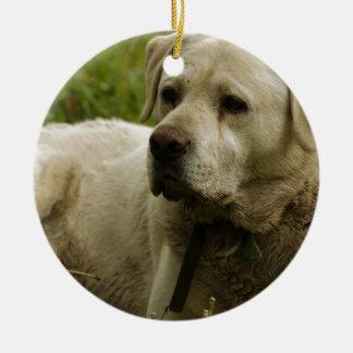 Labrador Photo Round Ceramic Decoration