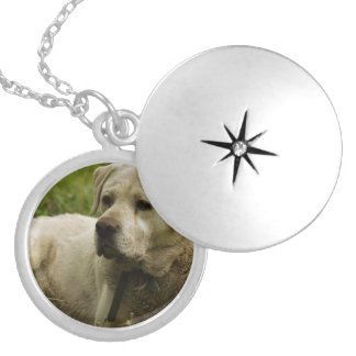 Labrador Photo Silver Plated Necklace