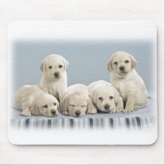 Labrador puppies mouse mat