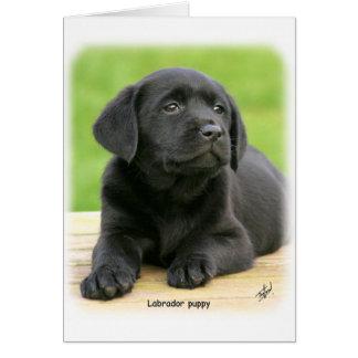 Labrador puppy 9Y267D-109 Greeting Card