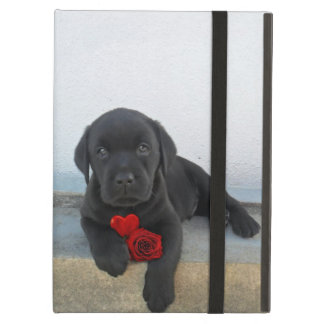 Labrador puppy dog iPad air case