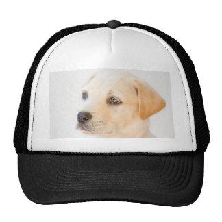 Labrador Puppy Trucker Hats