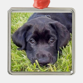 Labrador puppy ornament, black Lab Christmas Ornament