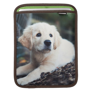 Labrador Puppy Playing In The Garden iPad Sleeve