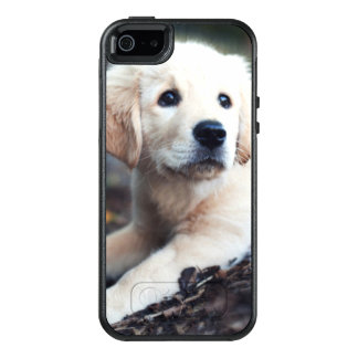 Labrador Puppy Playing In The Garden OtterBox iPhone 5/5s/SE Case