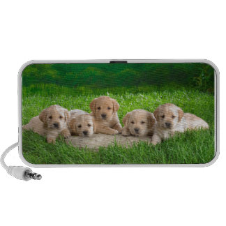 Labrador Puppy Power iPod Speaker