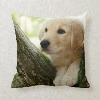 Labrador Puppy Sitting In A Woodland Setting Cushion