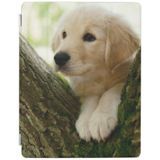 Labrador Puppy Sitting In A Woodland Setting iPad Cover