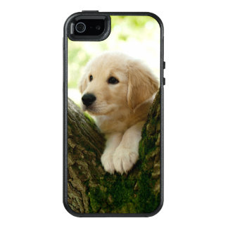 Labrador Puppy Sitting In A Woodland Setting OtterBox iPhone 5/5s/SE Case