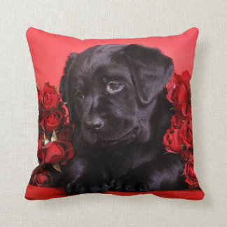 Labrador puppy with roses cushion