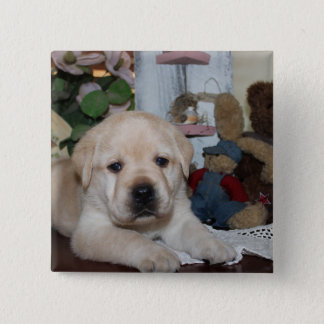 Labrador Retriever 15 Cm Square Badge