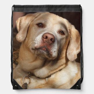 Labrador Retriever 2 Drawstring Bag