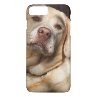 Labrador Retriever 2 iPhone 7 Plus Case