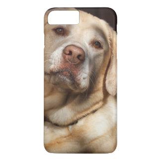 Labrador Retriever 2 iPhone 8 Plus/7 Plus Case