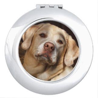 Labrador Retriever 2 Travel Mirror