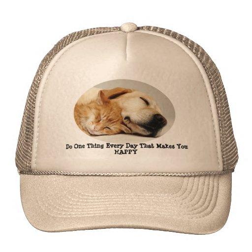 Labrador Retriever and Cat Hat