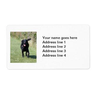 Labrador Retriever black dog custom address labels
