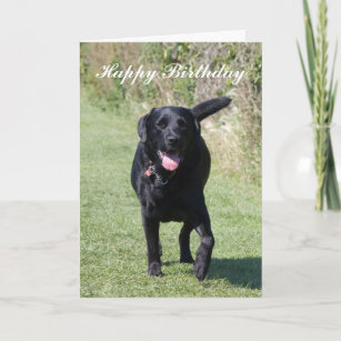 Labrador Retriever Black Dog Custom Birthday Card
